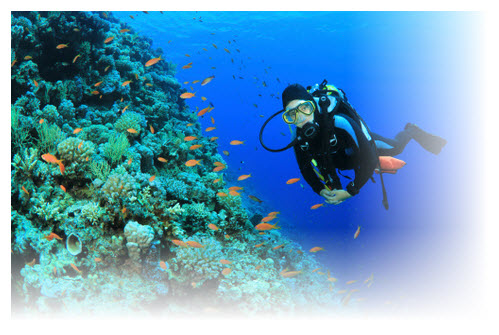 Diving, snorkelling & swimming Langkawi – Payar